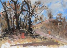 Bushfire aftermath just outside the studio, oil on canvas board, 59x84, $500