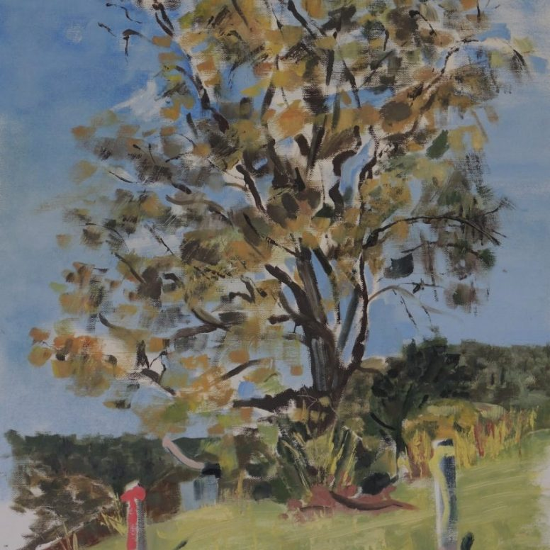 House site casuarina, oil on canvas paper, 42X59, $300