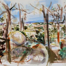 Balcony view 2, watercolour, 42x59, $500
