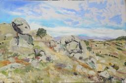 Caringa upper paddock towards Pyalong, oil on canvas board, 61x91, $700