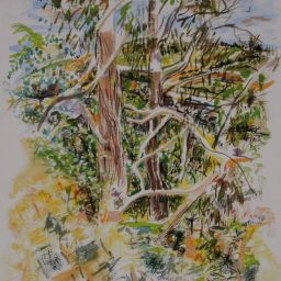 Benloch living room view,watercolour, 42x29, $300