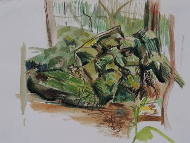 Wodi Wodi Rainforest 3, watercolour, 24x32, $200