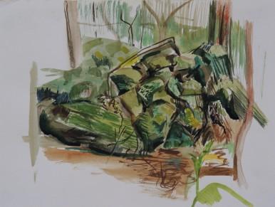Wodi Wodi Rainforest 3, watercolour, 24x32, $200