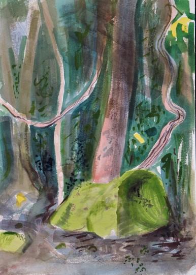 Wodi Wodi Rainforest 4